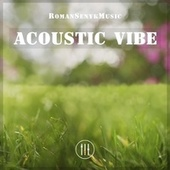 Acoustic Vibe by Romansenykmusic