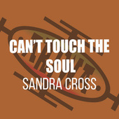 Can't Touch the Soul by Sandra Cross