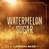 Watermelon Sugar de Lateral Blue
