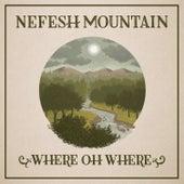 Where Oh Where (feat. Jerry Douglas, John Doyle, Michael McGoldrick & Jeff Taylor) von Nefesh Mountain