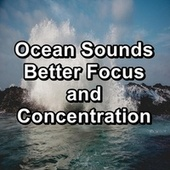 Ocean Sounds Better Focus and Concentration by Meditation (1)