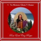 Tu Mereces Gloria Y Honor by Rosa Enid Cruz Roque