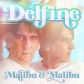 Delfine (Discofox Radio Edit) de Malibu