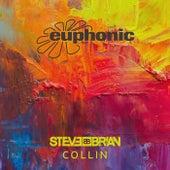 Collin von Steve Brian