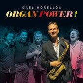 Organ Power! by Gael Horellou