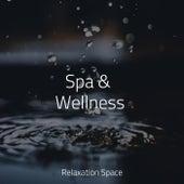 Spa & Wellness by Massage Music