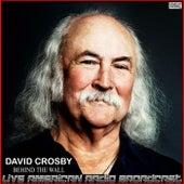 Behind The Wall (Live) de David Crosby