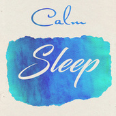 Calm Sleep by Various Artists