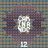 Caminando 12 de Various Artists