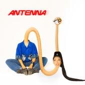 Antenna de Dizzy Fae
