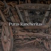 Puras Rancheritas de Various Artists