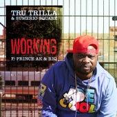 Working (feat. Prince Ak & RIQ) by Tru Trilla