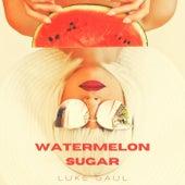 Watermelon Sugar de Luke Gaul
