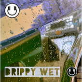 Drippy Wet (Instrumental) by BruceDayne