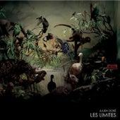 Les Limites von Julien Doré