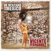 Un Mexicano En La México - Vicente Fernández de Vicente Fernández