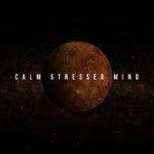Calm Stressed Mind: Spiritual Calmness, Music for Deep Sleep, Healing Relaxation by Deep Sleep Music Academy
