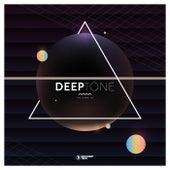 Deeptone, Vol. 16 von Various Artists
