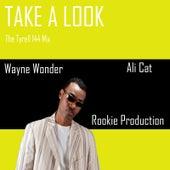 Take a Look the Tyrell 144 Mix de Wayne Wonder