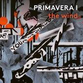 Primavera I: The Wind by Matt Haimovitz