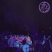 Levitation Sessions (Live) de Fuzz