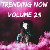 Trending Now Volume 23 fra Various Artists