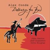 Descarga for Bud by Alex Conde