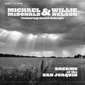 Dreams Of The San Joaquin von Michael McDonald
