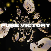 Pure Victory by Diversify