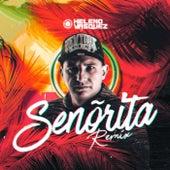 Señorita (Remix) by Heleno Vasquez