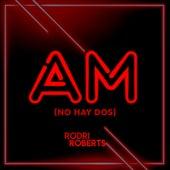 Am (No Hay Dos) de Rodri Roberts