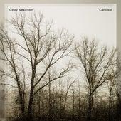 Carousel von Cindy Alexander