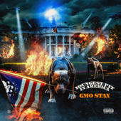 Youngest Pit In America by GMO Stax
