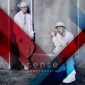 sense by Loopy
