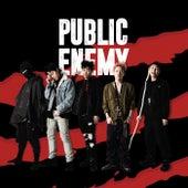 Public Enemy (Deluxe Version) by Mkit Rain