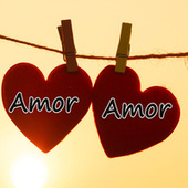 Amor Amor Hits by Various Artists