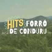 Hits Forró de Conduru de Various Artists