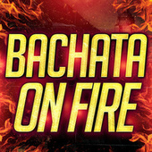 Bachata on Fire von Various Artists