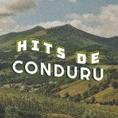 Hits de Conduru de Various Artists