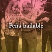 Peña Bailable de Various Artists