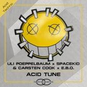 Acid Tune by Uli Poeppelbaum