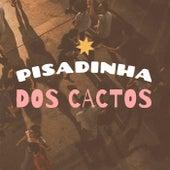 Pisadinha dos Cactos de Various Artists