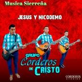 Jesus y Nicodemo by Grupo Corderos De Cristo
