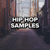 Hip Hop Samples von Various Artists