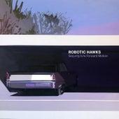 Security by Robotic Hawks