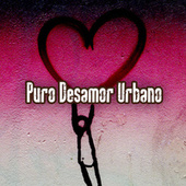 Puro Desamor Urbano von Various Artists