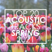 Top 20 Acoustic Tracks Spring 2021 (Instrumental) by Guitar Tribute Players