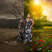 The Cure by Latice Crawford