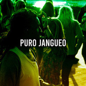 Puro Jangueo by Various Artists