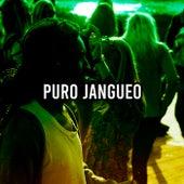 Puro Jangueo von Various Artists